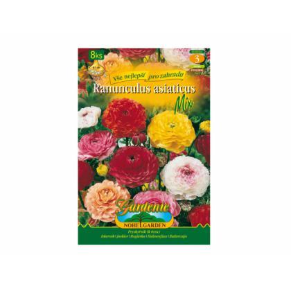 Ranunculus mix 8ks