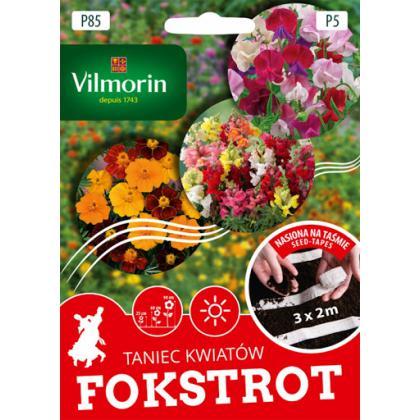 P85 Kolekcia semien na pásiku FOKSTROT - 6,2g