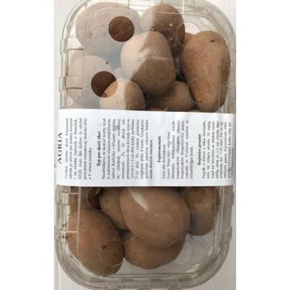 Agria - sadbové zemiaky 45ks