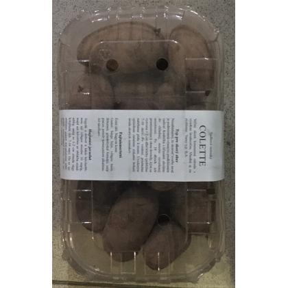 Colette - sadbové zemiaky 45ks