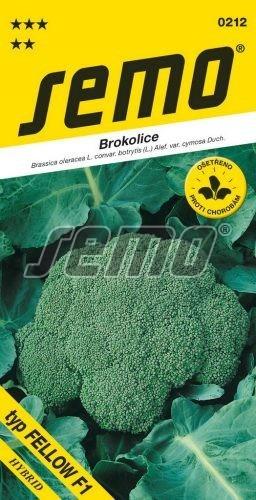 Brokolica STEEL (FELLOW) F1 30s