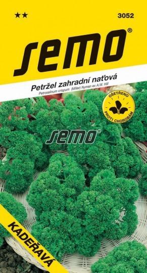 Petržlen záhradný vňaťový KADEŘAVÁ 4g