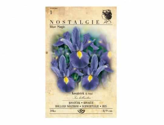 Iris MAGIC BLUE 10ks