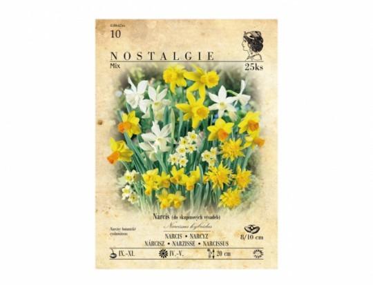 Narcis botanický, zmes 25ks