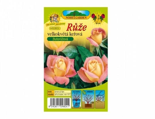 Ruža veľkokvetá kríková - žlto/ružová 1ks