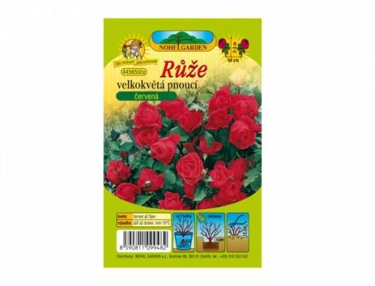Ruža veľkokvetá ťahavá - červená 1ks