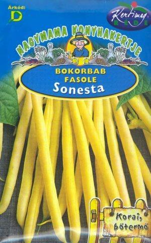 Fazuľa kríčková - SONESTA 50g