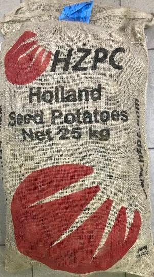 Victoria - holandské sadbové zemiaky 25kg