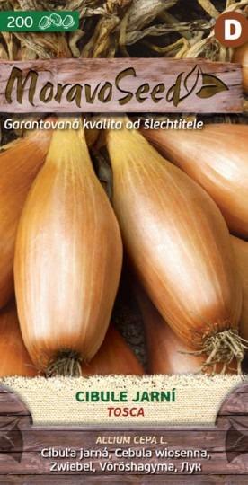 Cibuľa jarná - Tosca 1g
